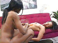 This rare niche site features ebony girls engaged in lesbian sex with each other. It's hard to find a sista who will eat pussy, but these hot dykes definitely do! There is nothing but girl on girl action in some sexy brown sugar lovin inside this mega rar